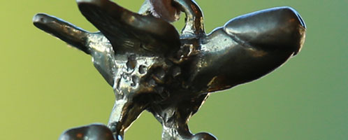 Winged phallus : Fascinus